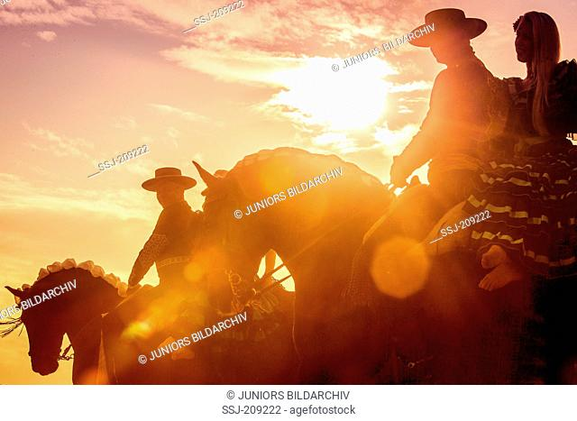 Lusitano. Couples in Spanish costume riding on a Feria, silhouetted against a dramatic sky. Germany