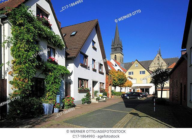 D-Bad Driburg, nature reserve Teutoburgian Forest / Eggegebirge, East Westphalia, Westphalia, North Rhine-Westphalia, NRW, city view, residential buildings