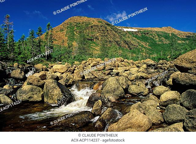 Mountain stream and the Mont-Albert in the background, Gaspésie National Park, Gaspé, Québec, Canada