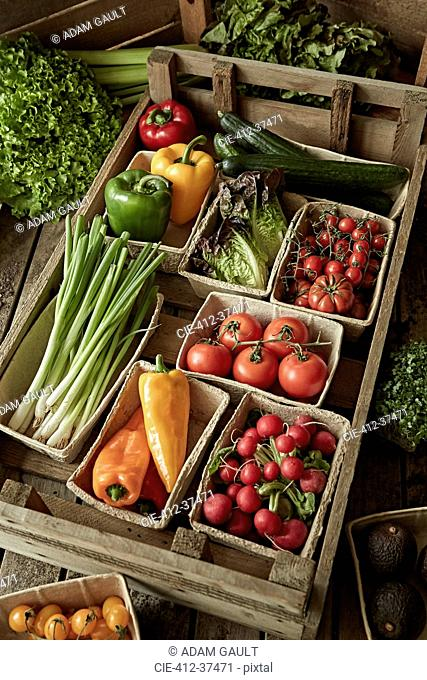 Still life fresh, organic, healthy vegetable harvest variety in wood crate