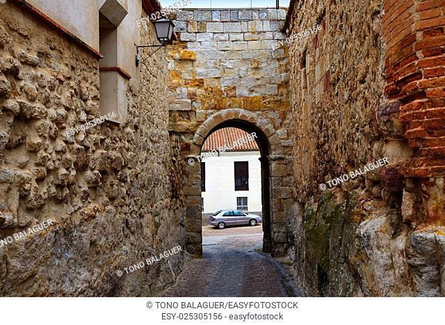 Zamora door of Dona Urraca in Spain by the via de la Plata way of Saint James