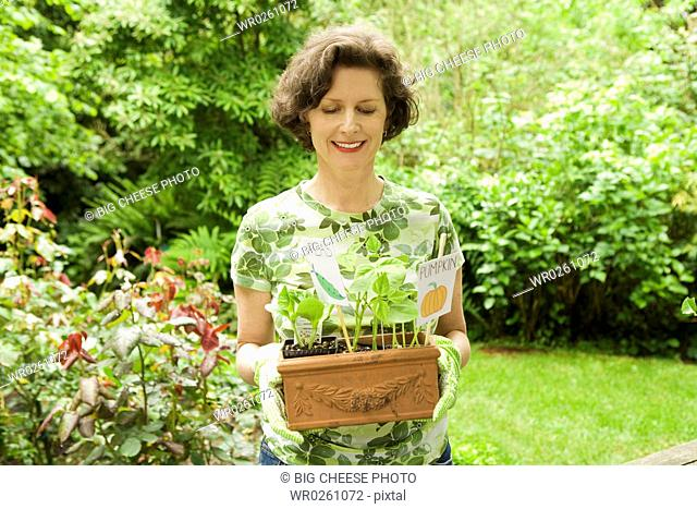 Woman holding pumpkin seedlings in garden