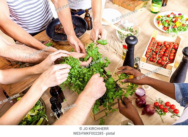 Friends in kitchen plucking leaves from herbs