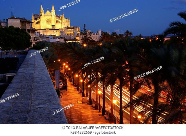 Catedral de Mallorca from the terrace of Baluard Museum, museu d'Art Modern i Contemporani de Palma Palma Mallorca Balearic Islands Spain