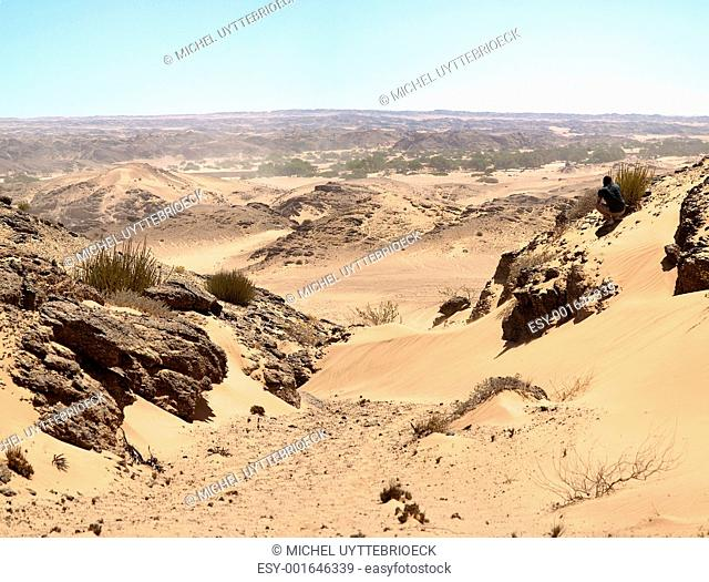 The Skeleton Coast Desert