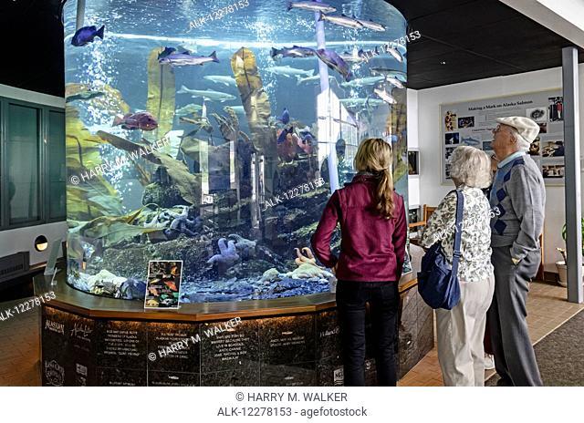 Tourists watching fish in a salt water aquarium, Macaulay Salmon Hatchery, Juneau, Southeast Alaska
