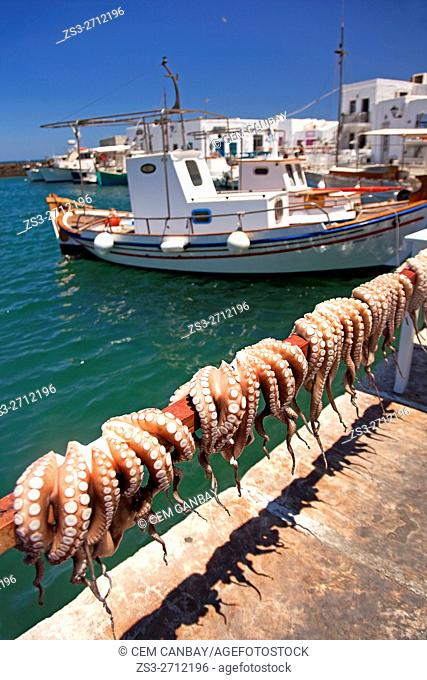 Fishing boats at the port with hanging octopus for dry in the foreground in Naoussa village, Paros, Cyclades Islands, Greek Islands, Greece, Europe