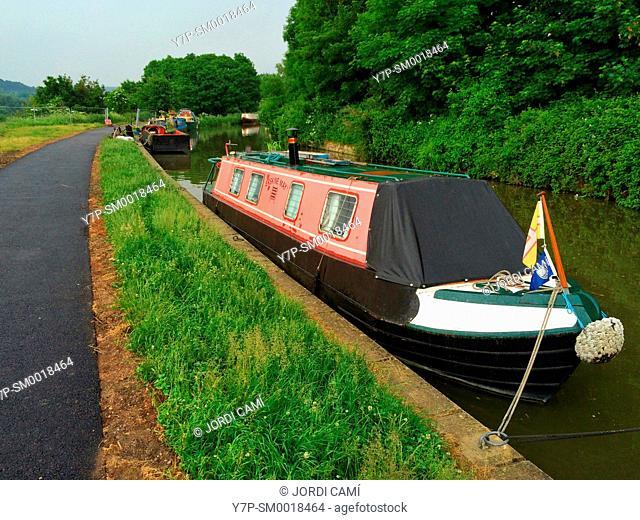Houseboats docked alongside footpath. Avon Canal,Bath. Somerset. England. United Kingdom