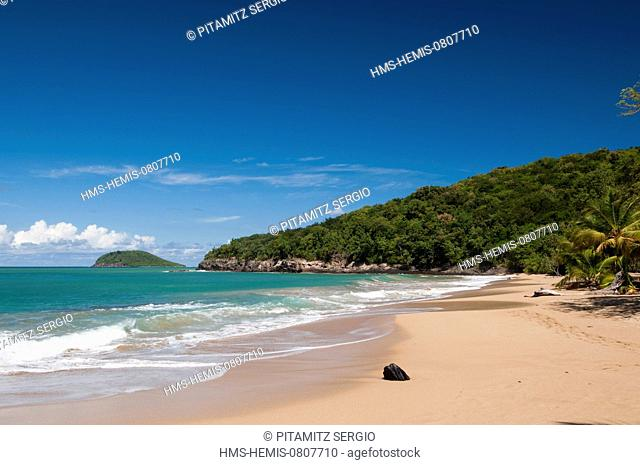 France, Guadeloupe (French West Indies), Basse Terre, Deshaies, La Perle Beach