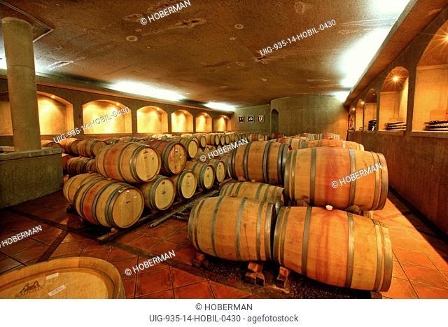 Wine Barrels in Wine Cellar, Chile