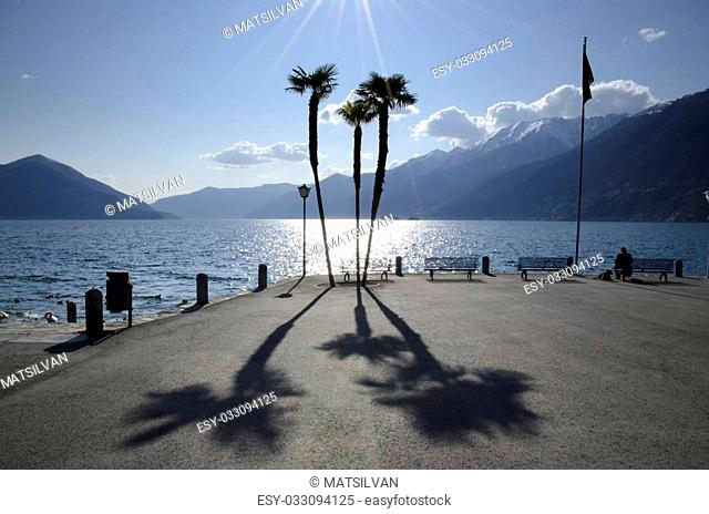Palm trees with shadows on the lakefront and mountain and blue sky with clouds