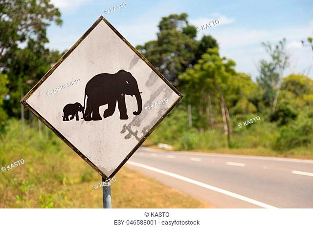 Road sign in Sri Lanka. Caution, elephants crossing the road