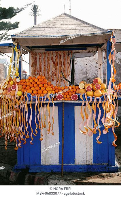 Essaouira, market stall, sales of citrus fruits, Morocco