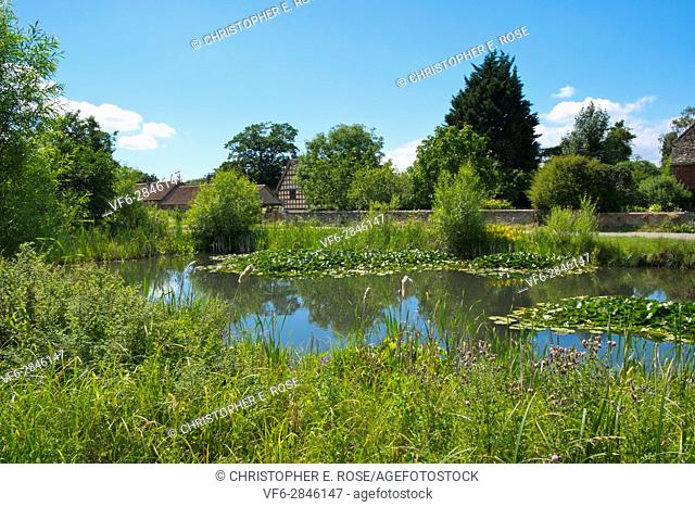 Summer sunshine on the picturesque village green and ponds at Frampton on Severn, Gloucestershire, UK