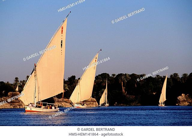Egypt, Nile valley, naviguation in felucca between Aswan and Luxor
