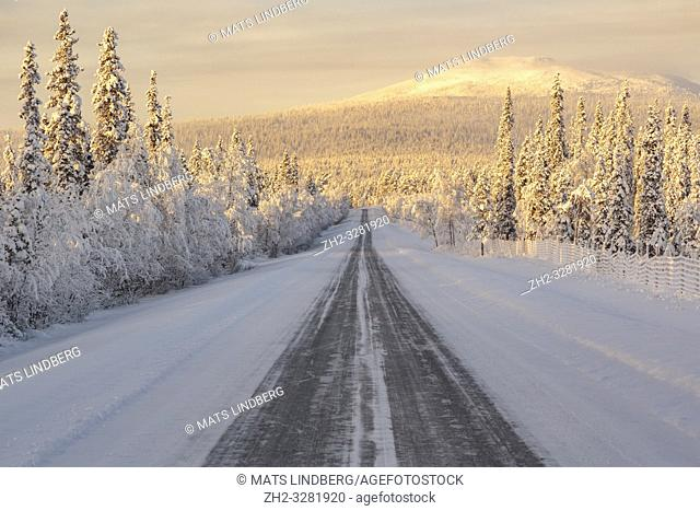 Landscape in winter season, nice warm afternoon light, ice road leading in to the picture, mountain in background, Gällivare county, Swedish Lapland, Sweden