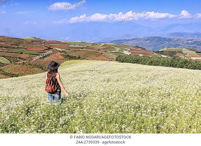 An unrecognizable girl enjoying DongChuan red land panorama, one of the landmarks in Yunnan Province, China