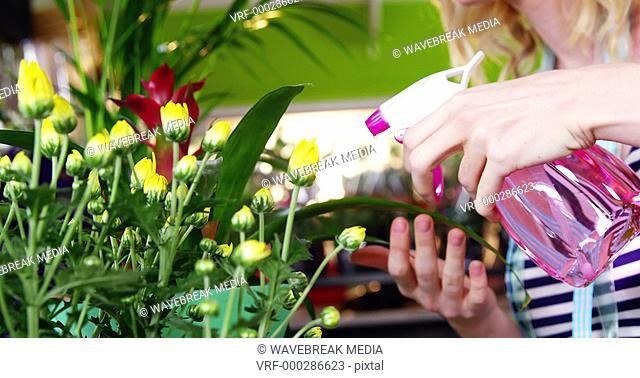 Female florist spraying water on flowers in flower shop