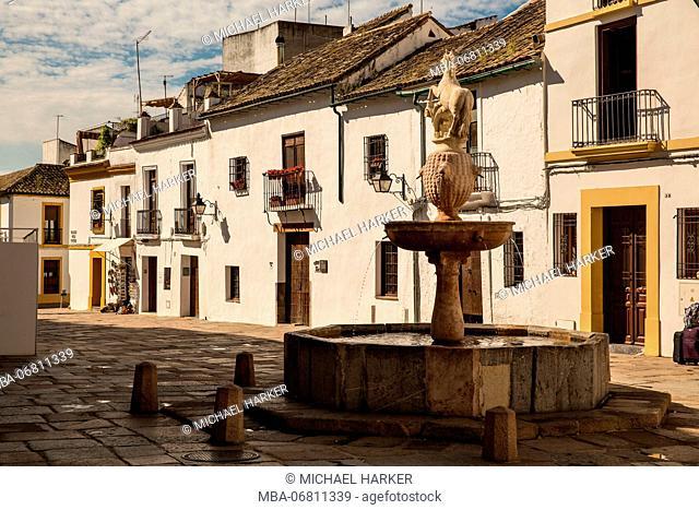 Europe, Spain, Andalusia, Cordoba, houses, fountain