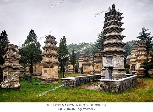 The Shaolin Temple Pagoda forest graveyard in DengFeng, Zhengzhou, Henan Province, China 2014