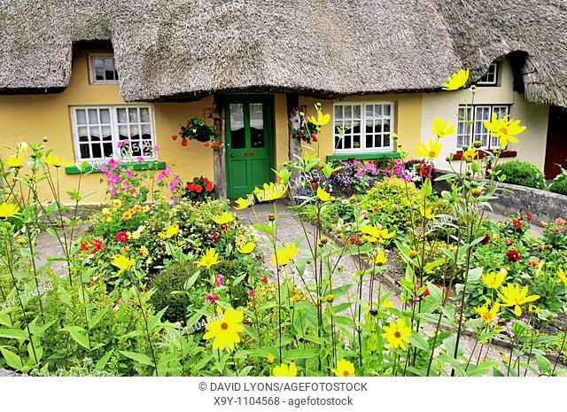 Picturesque traditional thatched cottage with garden summer flowers in town of Adare, County Limerick, Ireland