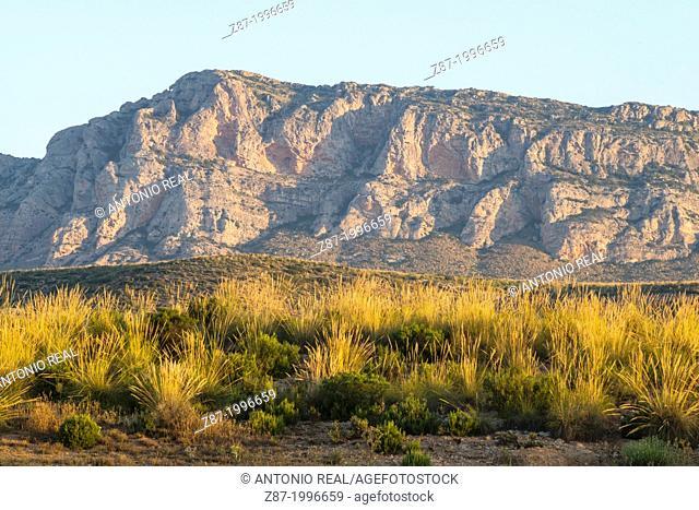 Sierra del Mugrón, Almansa, Albacete province, Castilla-La Mancha, Spain