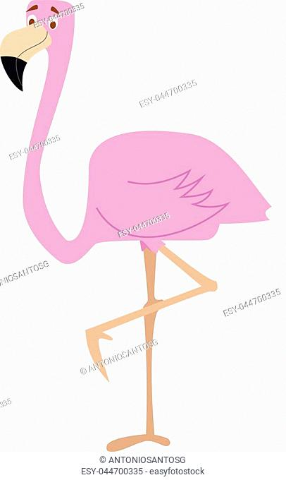 Cute cartoon flamingo vector illustration
