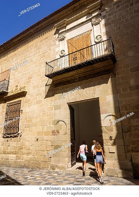Picasso Museum, Palacio Condes de Buenavista, Málaga capital, Costa del Sol, Andalusia Spain. Europe