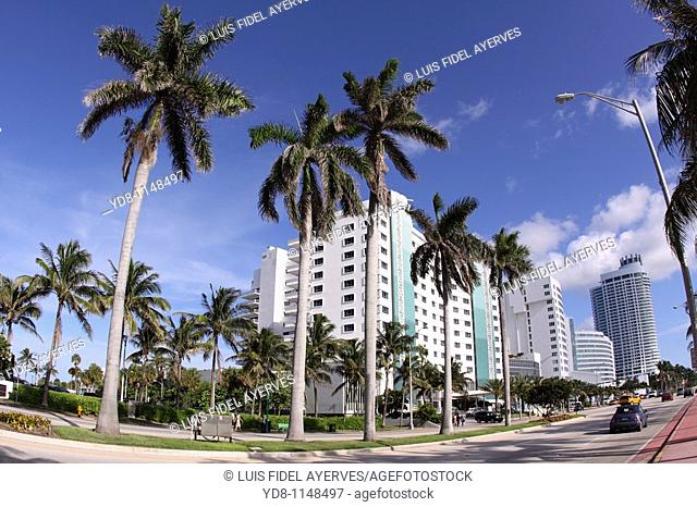 Collins Ave in Miami Beach, Florida, USA