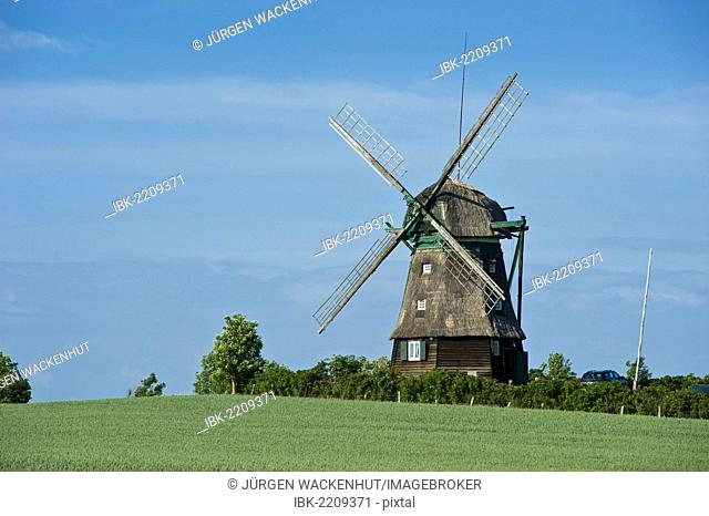Farver Muehle mill, Farve, Baltic Sea, Schleswig-Holstein, Germany, Europe