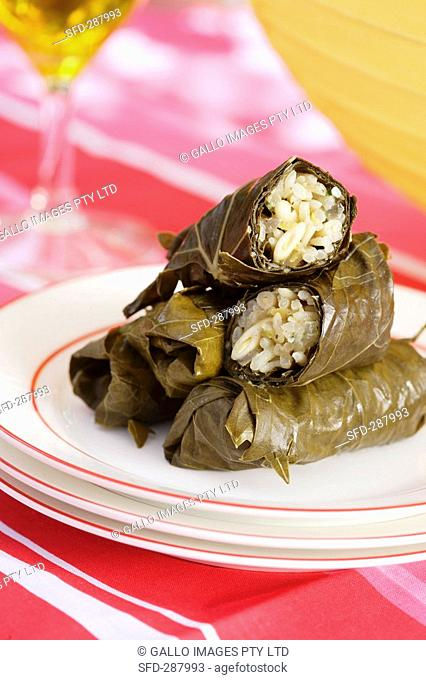 Dolmades Vine leaves with rice stuffing, Greece