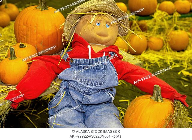 Decorative scarecrow surrounded by pumpkins, State Fairgrounds, Kodiak, Southwest, Southwest Alaska, Autumn