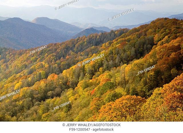 Autumn, Great Smoky Mountains National Park