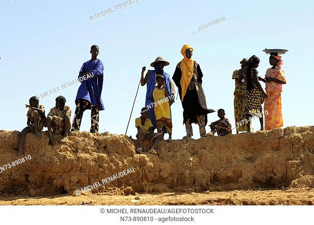 Fulani transhumance, Diafarabe, Mali