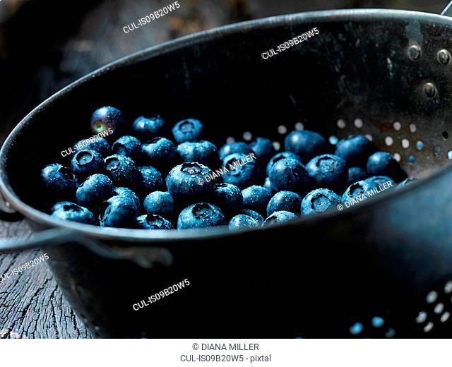 Fresh organic fruit, king blueberries