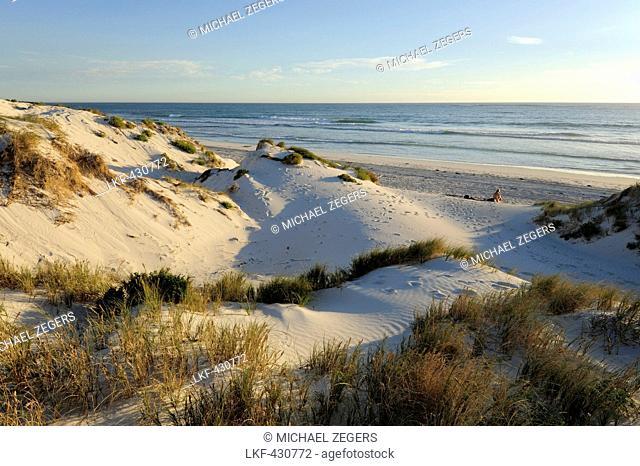 Beach and dunes at Lancelin, Perth, Western Australia, WA, Indian Ocean, Australia