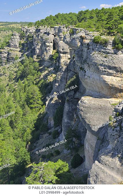 Mirador de los Buitres, near los Callejones, Las Majadas, Cuenca province, Spain