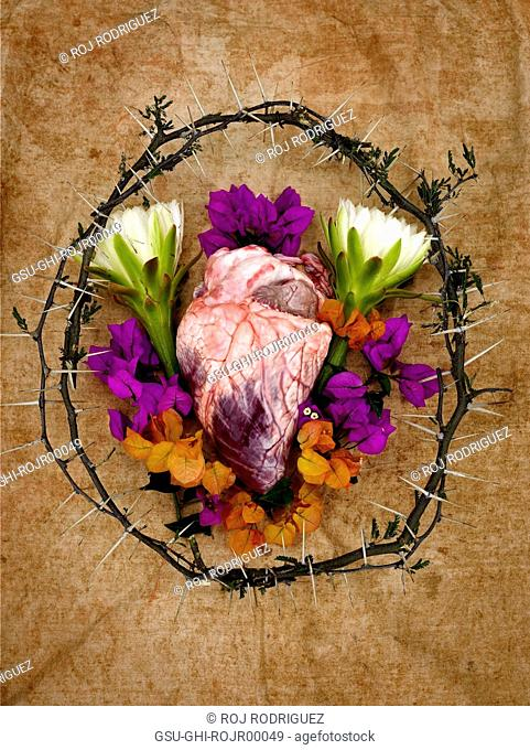 Ox Heart with Flowers and Crown of Thorns