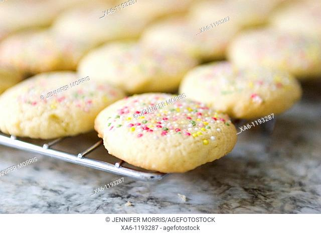 Freshly baked sugar cookies with colourful sprinkles, cooling on a rack