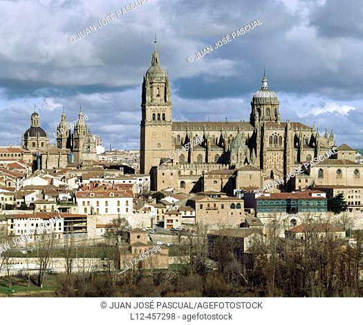 Old Romanesque cathedral (12th century) and new cathedral (16th-18th century), Salamanca. Castilla-León, Spain