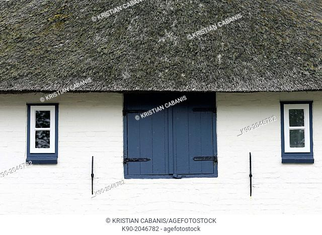 Roof of a Frisian house, Island of Foehr, Northfrisian Islands, Schleswig-Holstein, Germany, Europe