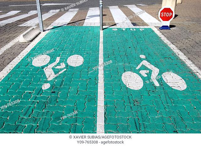 Bicycle lane, Lacanau. Gironde, Aquitaine, France