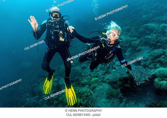 Senior couple scuba diving close to Komodo Island, portrait, Nusa Tenggara Timur, Indonesia