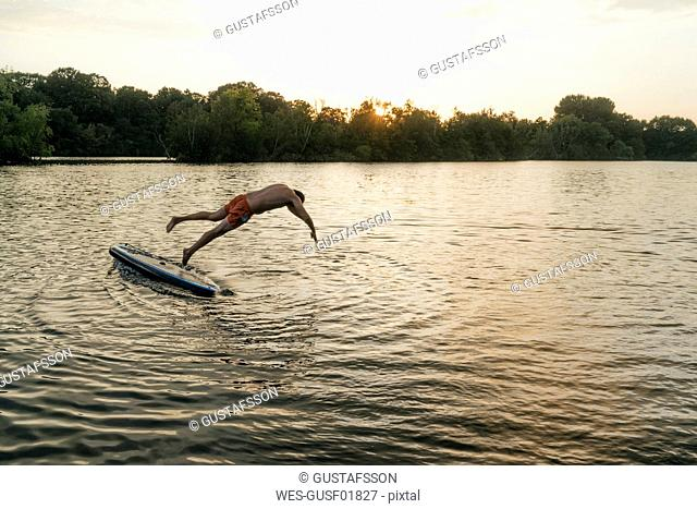 Man jumping from SUP board on a lake at sunset