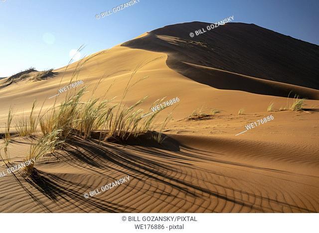 Elim Dune in Namib-Naukluft National Park, Namibia, Africa