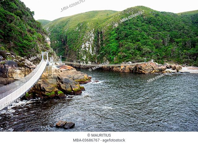 South Africa, Tsitsikamma National Park, Storms River Mouth, suspension bridge