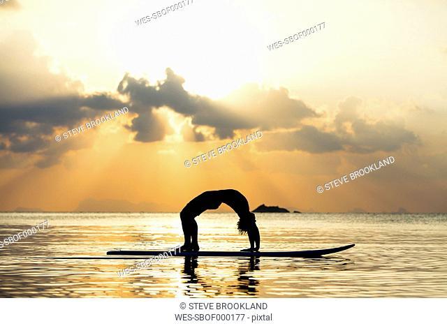 Thailand, man doing yoga on paddleboard at sunset, bridge position
