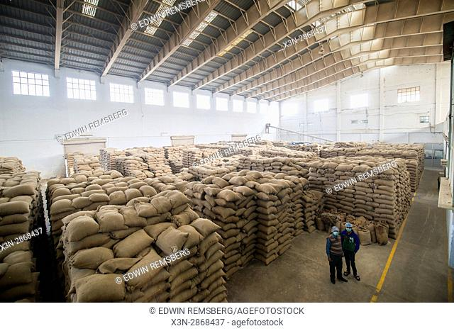 A large warehouse space is filled with sacks of grains in New Delhi, India