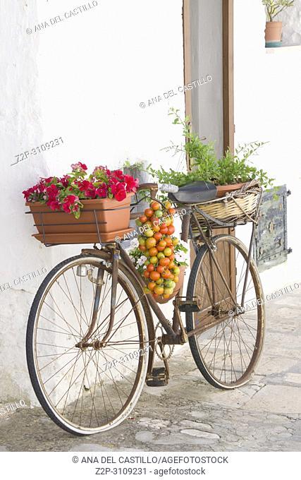 Alberobello in Bari Puglia, Italy.Decorated bicycle on trullo
