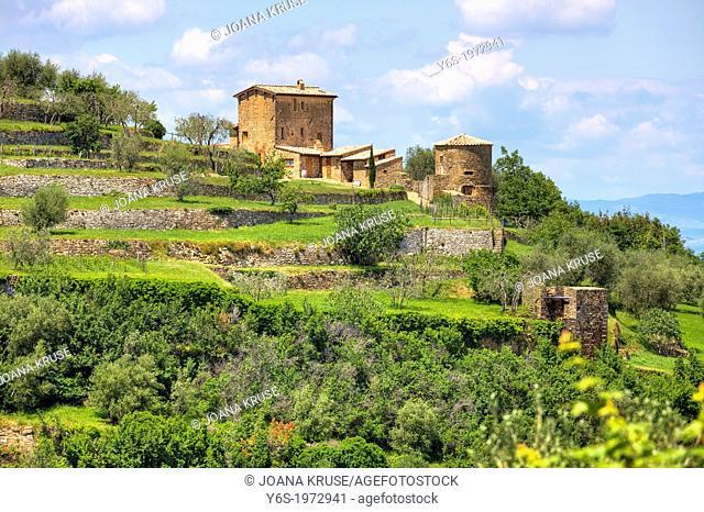 winery near Montalcino, Tuscany, Italy